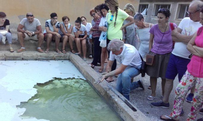 Terme Luigiane: visita acque termali